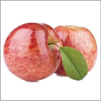 REVI(ルヴィ)陶器トリートメントに配合される成分:リンゴ幹細胞